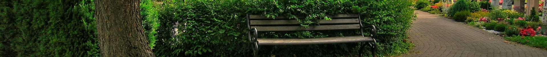 Bench at a cemetery